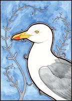 Herring Gull II by urbanimal