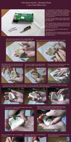 Clay horns tutorial - Elfen Lied / Lucy. by neptunyan