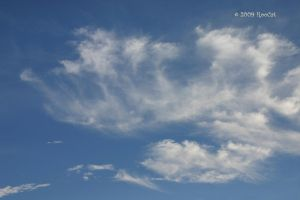 Mare's Tail Cirrus Clouds by RooCat