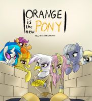 Orange is the new Pony by Shimazun