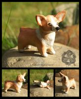 Sculpture: Corgi by dakazi