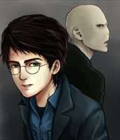 Harry and voldemort by ichan-desu