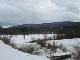 Icy swamp and snowy hills by EthanRedOtter