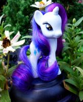 My Little Rarity by Mistralla