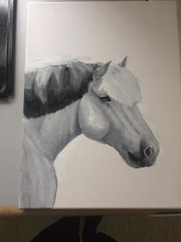 Fjordhorse painting by Ducera