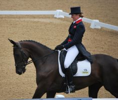 Dressage 26 by equinestudios