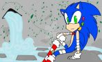 Sonic by Sikathesoul