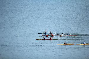 Rowing exercise by petkanna