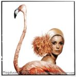 Flamingo -- Deneuve by GuddiPoland