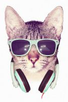 COOL CAT by dzeri
