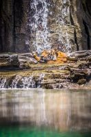 Tiger Falls by 904PhotoPhactory