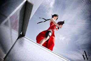 Ada Wong (Resident Evil ) IV by AndyWana