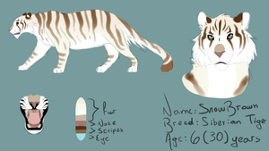 ||*-- SnowBrown --*||*-- New OC Reference --*|| by KittyWinder74