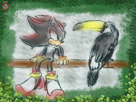 shadow and a Toco toucan colored by shadowhatesomochao