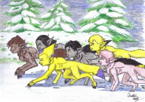 Lyoko Werewolves in the snow by WhiteBlueWerecat