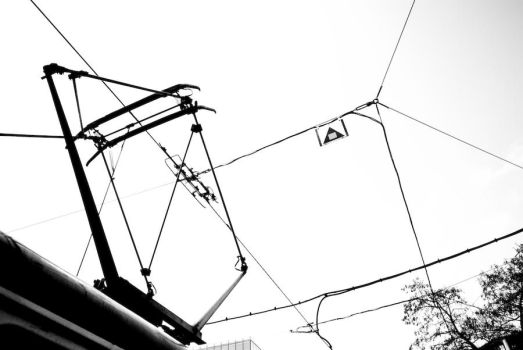 Wires by m0gwa1