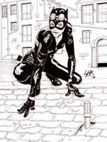 Catwoman by Captroop