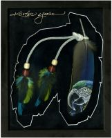 Macaw Feather Framed by dittin03