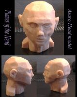 Asaro Head by CJM99
