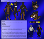 [C] Riley Connors Character Sheet by KillerWolf1020