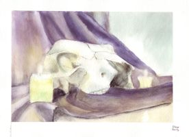 skull with candles by DianeAarts