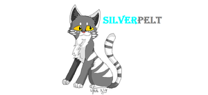 Silverpelt*old* by Wyeth-Kitty
