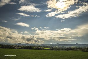 Light On The Plain by Aneede