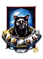 Nixon the Space Cat by Barnlord
