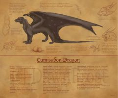 Camisadon Dragon ref by DawnFrost