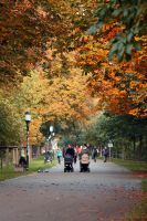 Herbst in Greifswald by AkuZeku