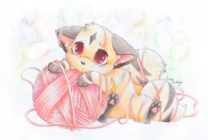 Kirara by SirKittenpaws