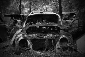 Old cars 4 by Timothy1