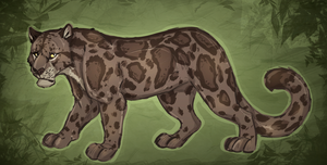 Clouded leopard by urealistisk