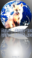 Real Firefox Icon by Ranx-88