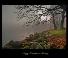 Foggy December Morning by Violet-Kleinert
