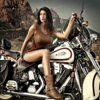 Harley Davidson by abclic