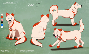Zac - Complex Ref Sheet Commission by Nala15