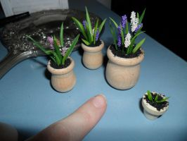 Miniature Flowers in Pots by kayanah