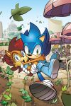Sonic the Hedgehog 222 Cover by herms85
