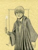 Harry Potter by seanforney