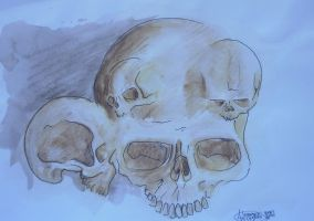 nothing to do skulls by Signevad