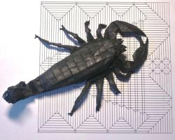 emperor scorpion by palaeorigamipete