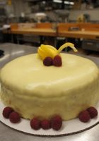 Raspberry Lemon Torte by RepoLadyWallace