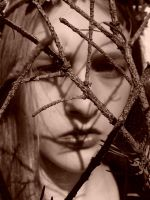 Adorn me a crown of thorns by PorcelainPoet