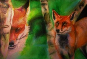 Foxes by ahsr