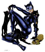 Catwoman and Kittins by Captain-Batman