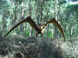Pterosaur 4 by omg-stock