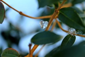 ice heart by lgreenoceaneyes