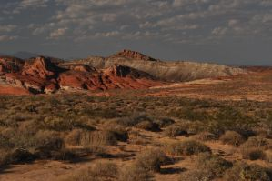Desert Landscape Valley of Fire by ConvertedCanvas