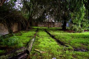 Moss Avenue by KAWproductions